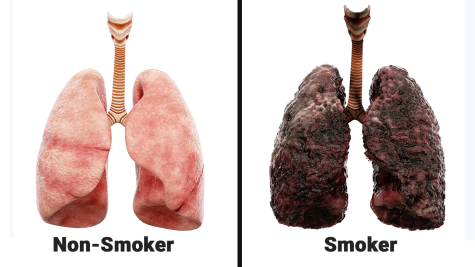 Scientists-Explain-What-Smoking-Every-Day-Does-To-Your-Lungs