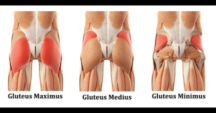 glute-muscle-stretches